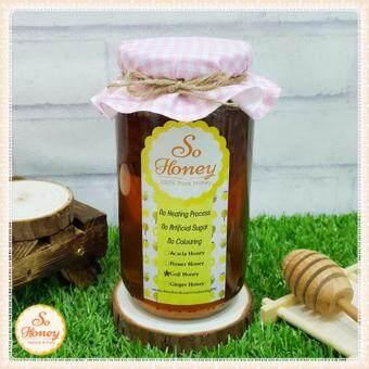 Malaysia Prices Goji Honey 100% Pure Honey (500g)