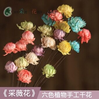 Cai Wei flower/small Daisy home furnishings decorative bouquet