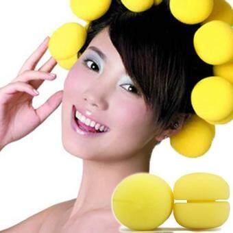 Harga Moonar Diy Hairdressing Tool Hair Rollers Snail Roll Styling Curler  Tool 18pcs . 7a0b568bdc