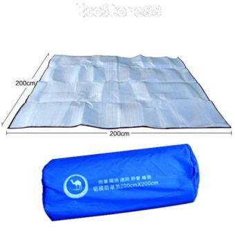 Aluminium Foil Outdoor Picnic Cushion Pad 200cm X 200cm Lazada Malaysia