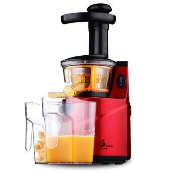 Slow Juicer Healthy Living : Healthy Living Slow Juicer Stainless Steel Natural Juice ...