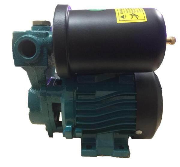 Pecker Gt-88 Auto Water Pump (Green)