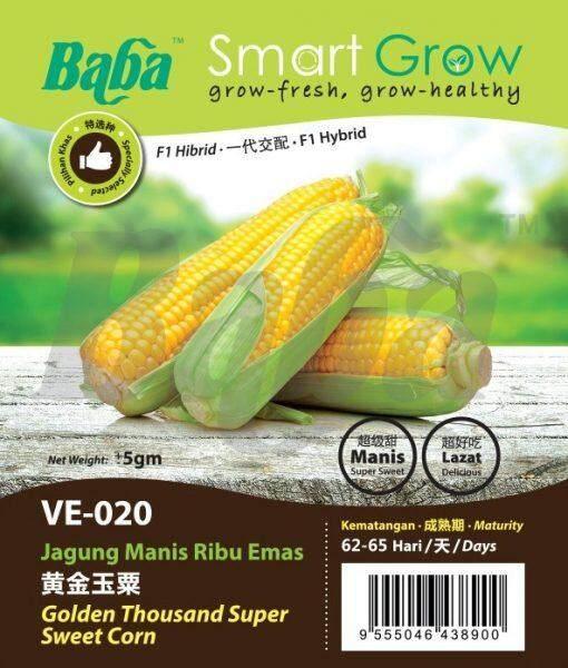 Baba VE-020 Smart Grow Golden Thousand Super Sweet Corn Seed - Vegetable Seed [5g]