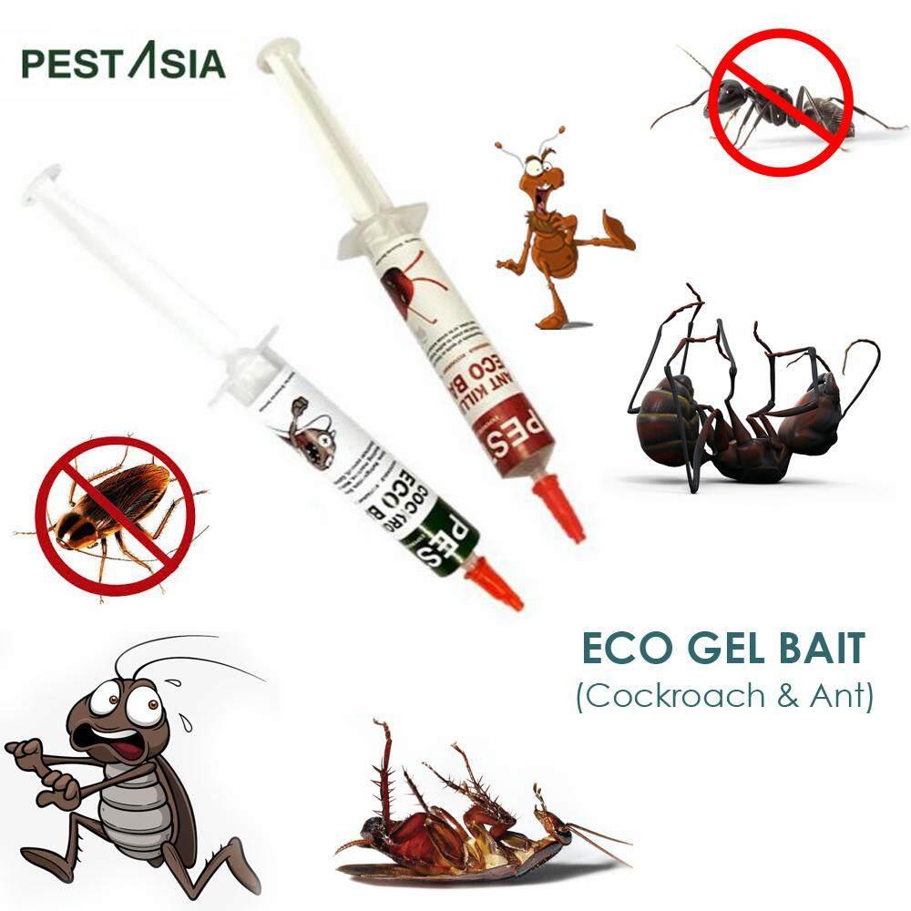Ant Cockroach Killer RACUN LIPAS & SEMUT 250GMYR18.