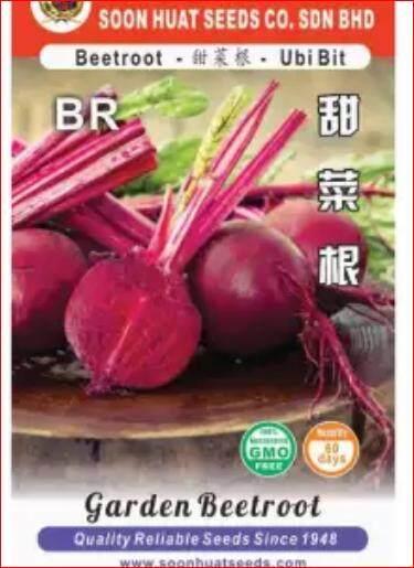 Garden Beetroot seeds GMO free DIY Garden Vegetable seeds