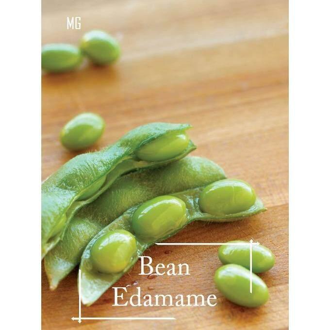 Japanese Edamame Seeds - 30 seed