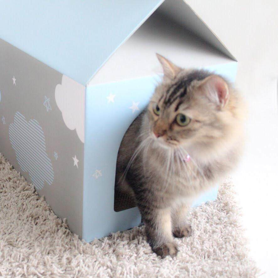 Lufox Meow Box - Cat House With Scratch Pads (cloudy Blue) By Lufox - The Pet Company.