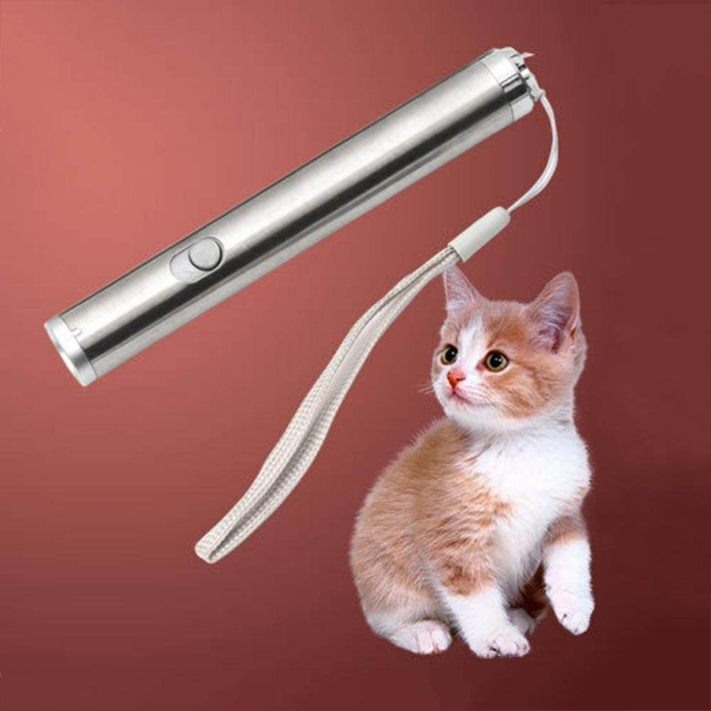 Pet Cat Interactive Pointer Light Pen Playing Training Toys By Companionship.