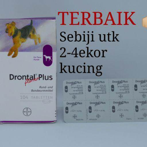 Drontal Plus anjing & kucing