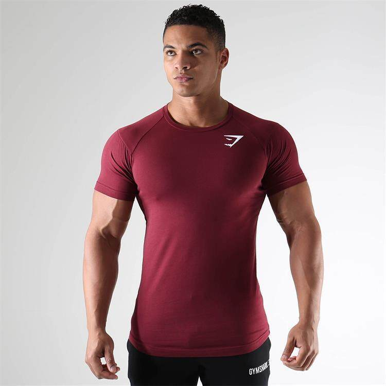 4f5eaef67cdf Summer Quick Dry Men T Shirts Compression Sports Running Tops Tees Slim Fit  Bodybuilding Fitness Gym
