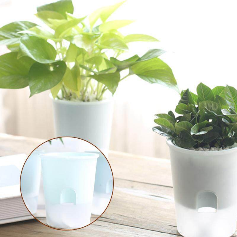 Home Pots, Planters & Urns - Buy Home Pots, Planters & Urns at Best ...