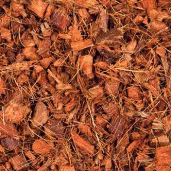 2 KG Coconut Chips Coco Coir Mulch for Orchid / Adenium Plants