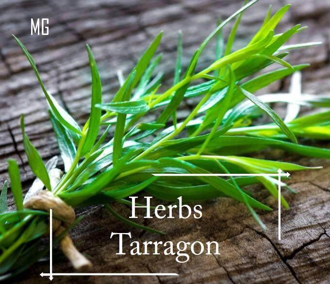 Tarragon Herbs Seeds - 100 seed