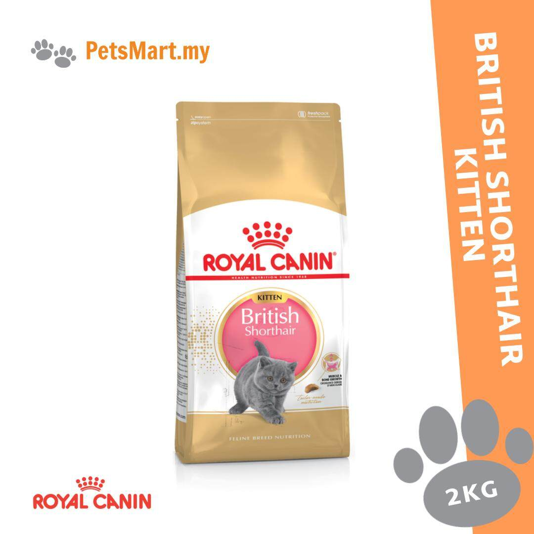 Royal Canin British Shorthair Kitten 2KG Dry Cat Food