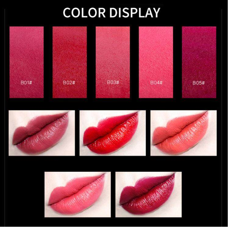 【Free Gift】FEILINKA Lipstick Set Matte Color Lip Stick Mini Set Charm  Lipstick Sample Kit Long-Lasting Waterproof with Gift Box 5PCS/SET lipstick