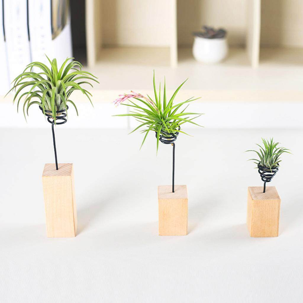 6cm Air Plant Stand Holder Container Tabletop Tillandsia Planter Desk Display Rack