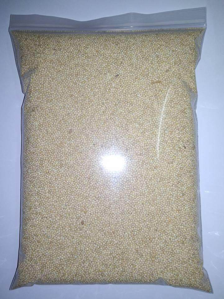White Millet Bird Food Feed 1kg By Kai Marketing.