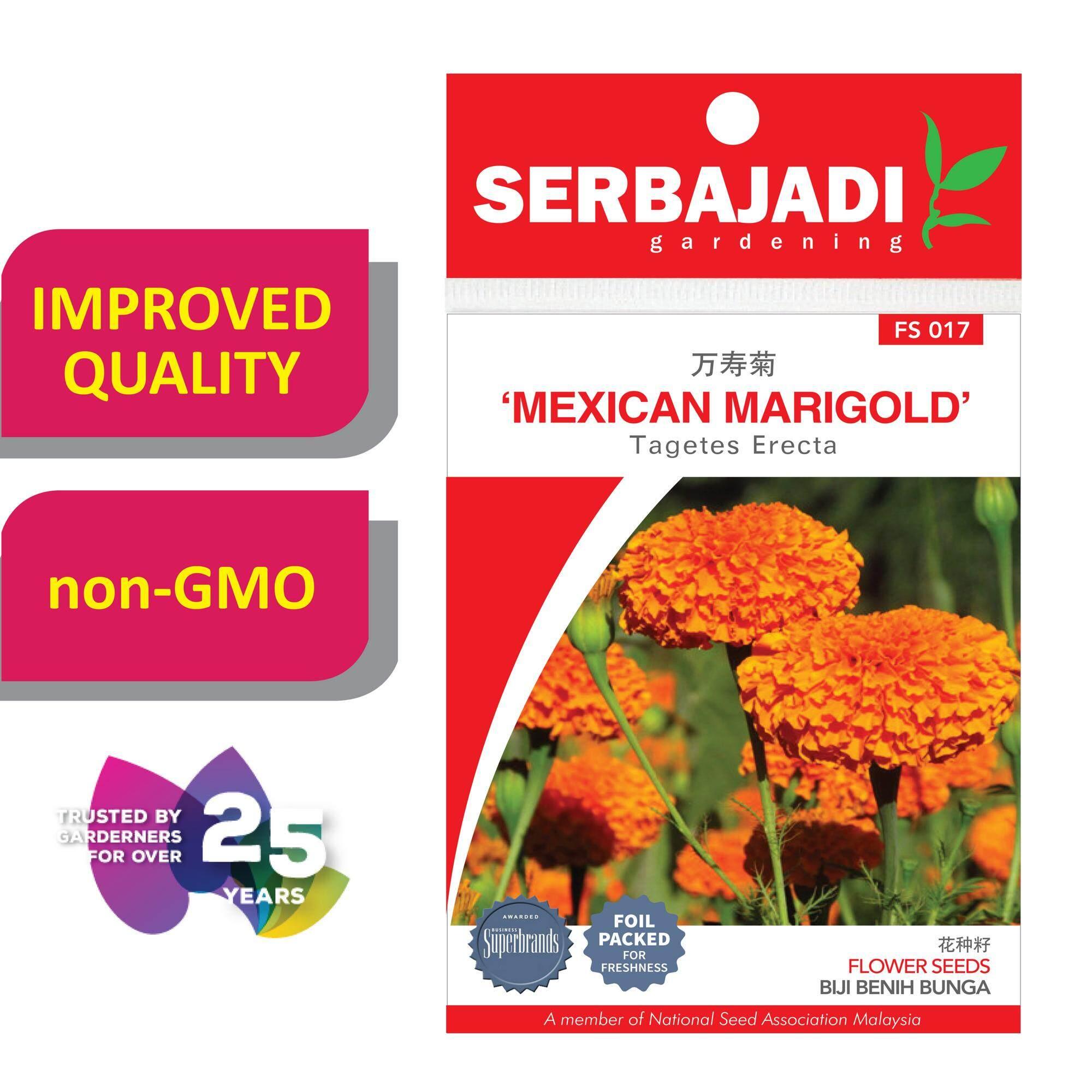 Serbajadi Seeds American Marigold;Tagetes Erecta FS017
