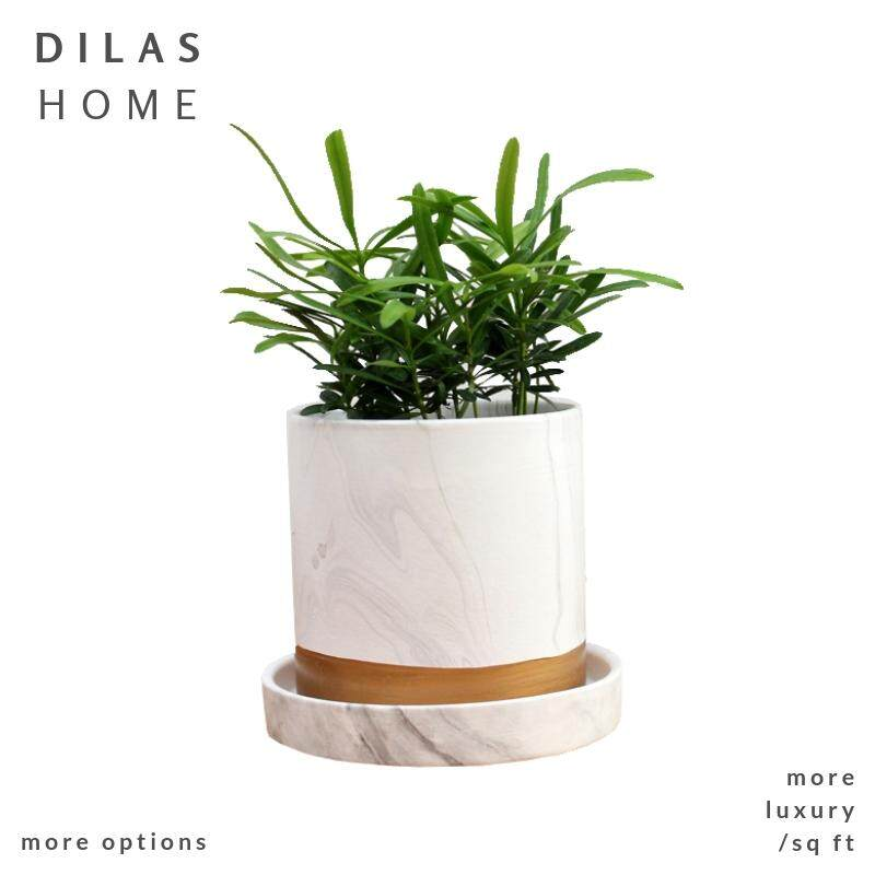 DILAS HOME Marble White Succulent Planter Flower Plant Pot with Saucer