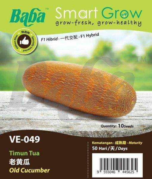Baba VE-049 Smart Grow Old Cucumber Seed - Vegetable Seed [10 Seeds]