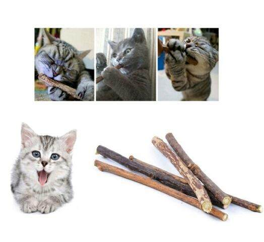 5pcs Natural Catnip Stick / Cleaning Tooth Stick / Cat Stick Snack By Yani Petstore.