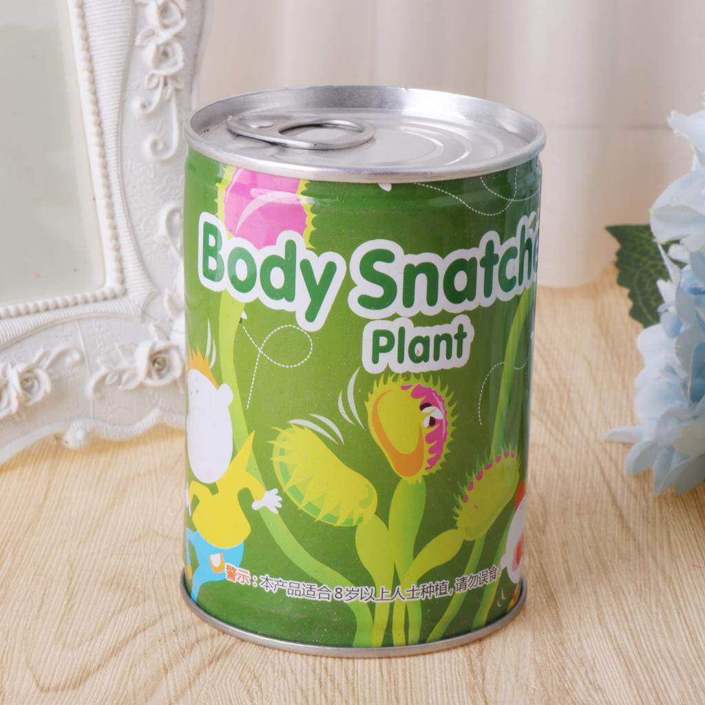 1 Can Eat Cordycep Seed Succulent Insect Catching Plant Garden Potted Slurperon