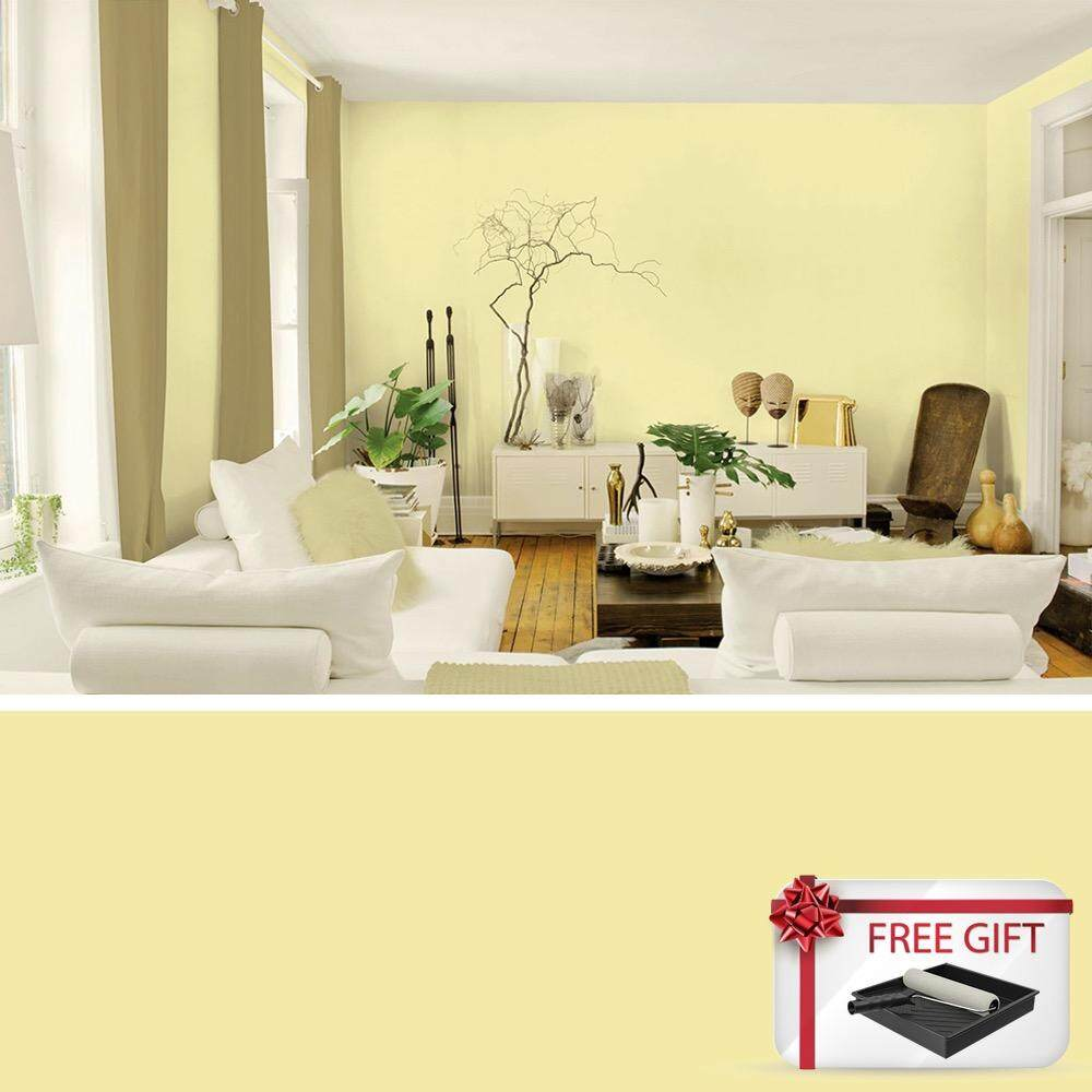 Home Paint & Primers - Buy Home Paint & Primers at Best Price in ...