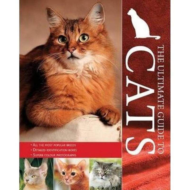 The Ultimate Guide To Cats 9781407557632 Malaysia