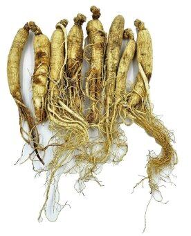 Panax Ginseng /Asian Ginseng ????? 2 roots x 3 packs