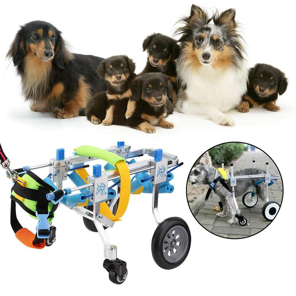 maelovi Four Wheels Adjustable Dog Wheelchair Fore-Leg Rehabilitation Cart  Paralyzed Pet Walk Assistant
