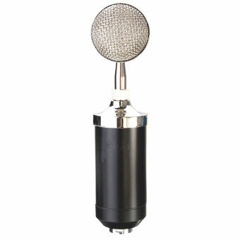 Harga Pro Professional Sound Dynamic Mic Studio Recording Condensor Microphone 3.5mm