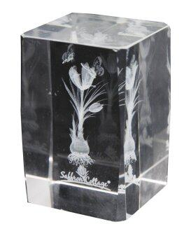 Harga Saffron Cottage SC-701A Crystal Glass Paper Weight & Home Deco