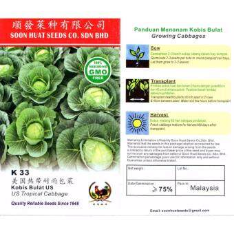 K33 Soon Huat Cabbage/ Kobis 100 Seeds GMO Free DIY Vegetable Seeds