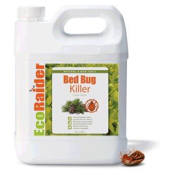 Pest Control In a Box Ecoraider Bed Bug Killer Spray 1 Gallon