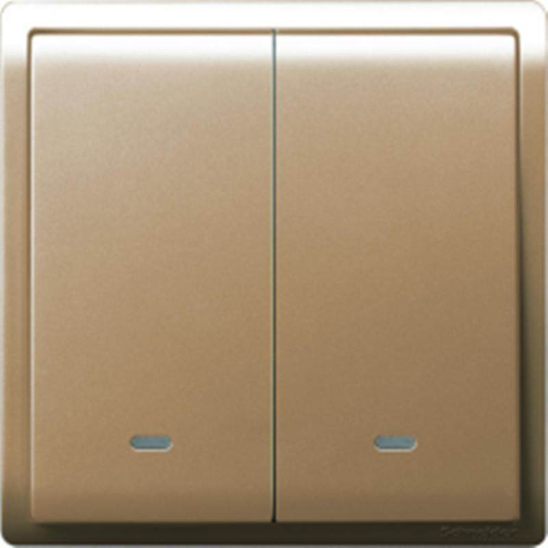 Schneider Pieno 16A x 250V 2 Gang 1 Way Switch With Fluorescent Locator, Gold