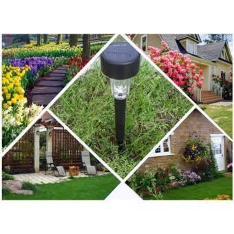 Solar LED Light White LED Outdoor Garden Lights Solar PoweredLandscape Yard Lawn Path Lamp