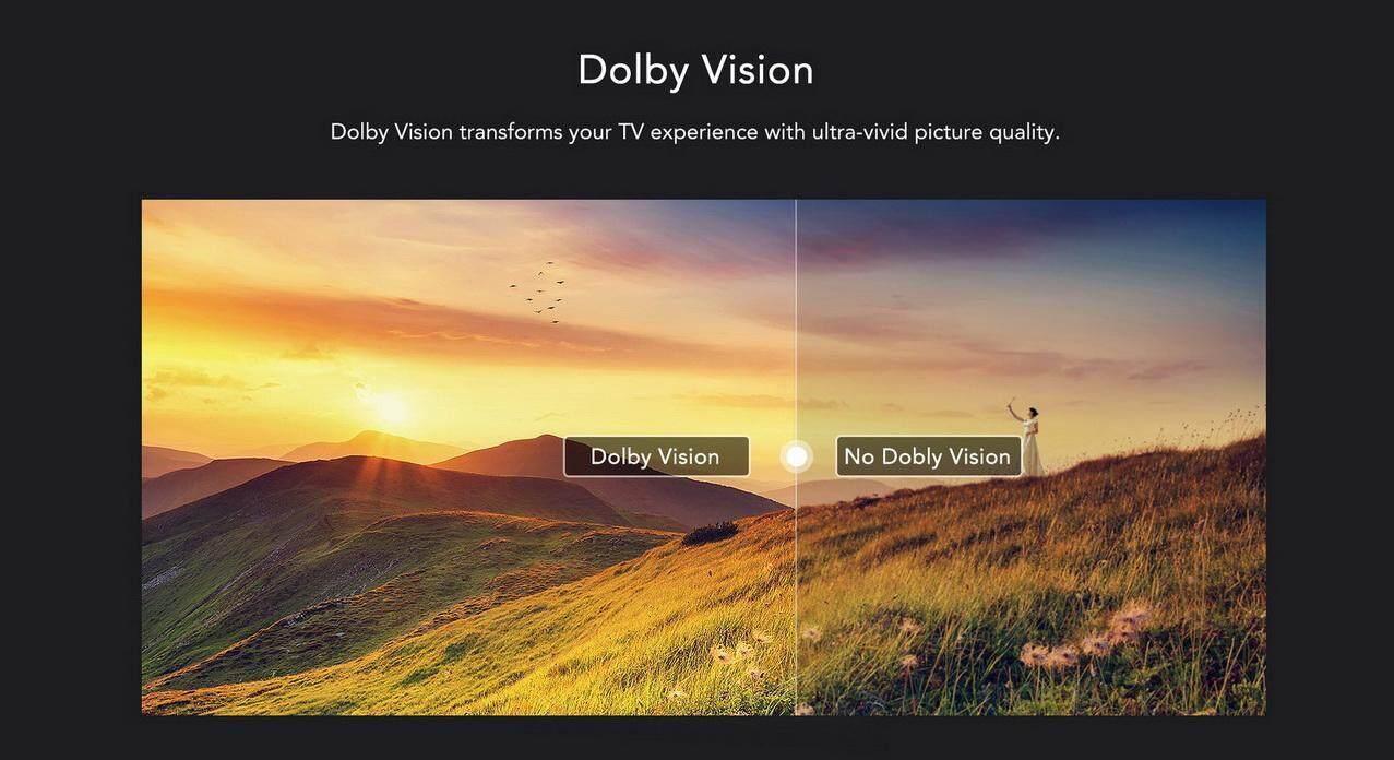 Dolby Vision.jpg