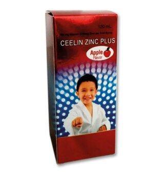 Ceelin Zinc Plus VItamin C and Zinc 120mL