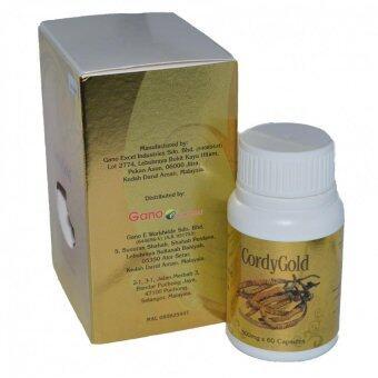Gano Excel Cordy Gold (60 capsules x 500mg) Ganoderma Lucidum - 2