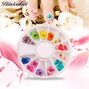 Harga BlinkinGel 12 Colors 3D Dried Dry Nail Flowers Nail Art Wheel Decoration Manicure Tips nail art wheel For UV Gel Nails DIY Stickers 30pcs/set