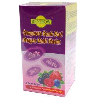 Harga Biogrow Mixed Berries with Multi Enzymes 120's