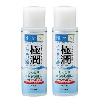 Harga [Twin Pack] Hada Labo Super Hyaluronic Acid Hydrating Lotion - Rich