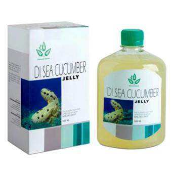 Harga GOLDEN SEA CUCUMBER JELLY 參寶 500ML