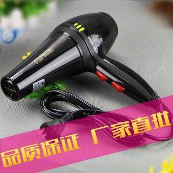 Harga Professional 3000w House Hold Hot and Cold Wind Hair Dryer-Black(HD-29)