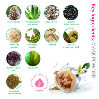 Harga Eosungcho Mask Powder - 100% Korean Made with Fermented Plants & Herbs