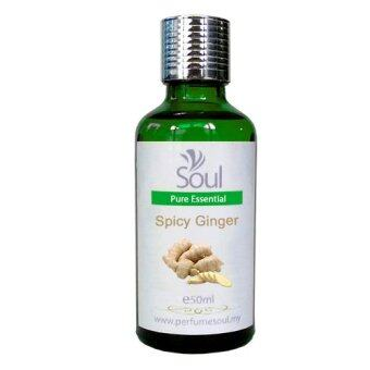 Harga Pure Essential Oil Ginger - Spicy Ginger - 50ml
