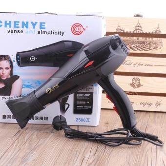 Harga Professional Strong Wind 2500W Cold and Hot Hair Dryer(HD-13)