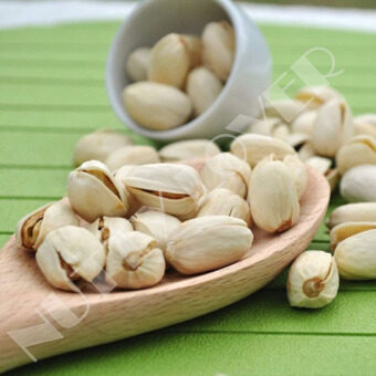 Nutty Lover Premium Salted Roasted Pistachio USA Nut (500 grams)