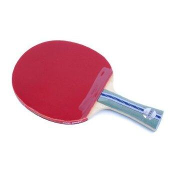 DHS Ping Pong Paddle A5002 Table Tennis Racket - Shakehand
