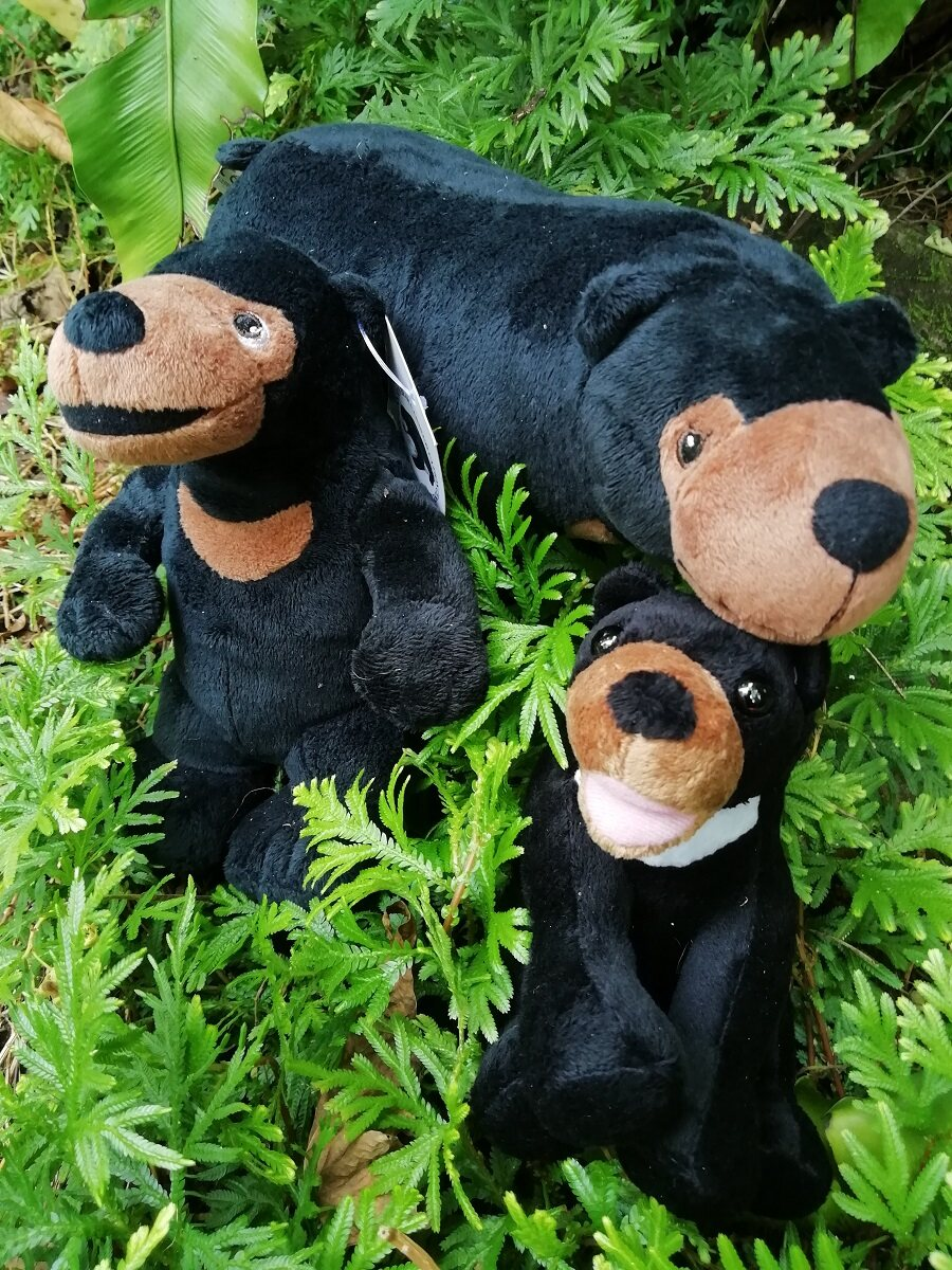 Sunbear Stuffed Animal, Sun Bear Walking Soft Toys Dolls Lazada